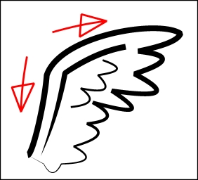 feathered-wing.jpg